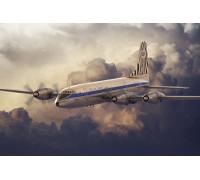 Самолет Bristol 175 Britannia African Safari