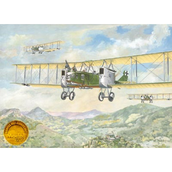 Самолет GOTHA G-II, G-III