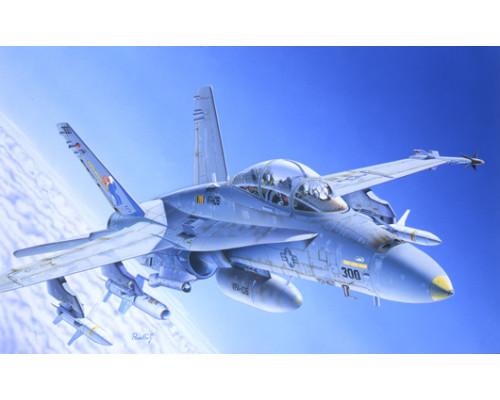 0016ИТ Самолет F/A 18 WILD WEASEL C/D